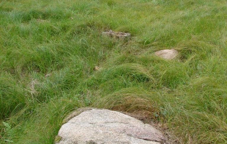 Lokalita č. 66 Semtěš – Vlčí skála