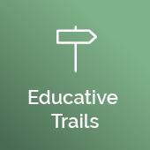 Educative Trails
