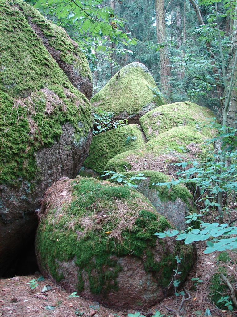 Lokalita č. 77 Kamenné stádo