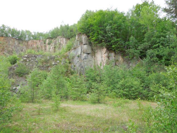 Lokalita č. 48 Lom pod Nasavrky